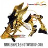 Footstep NUI Ninja 250 Fi Model Bikers Gold